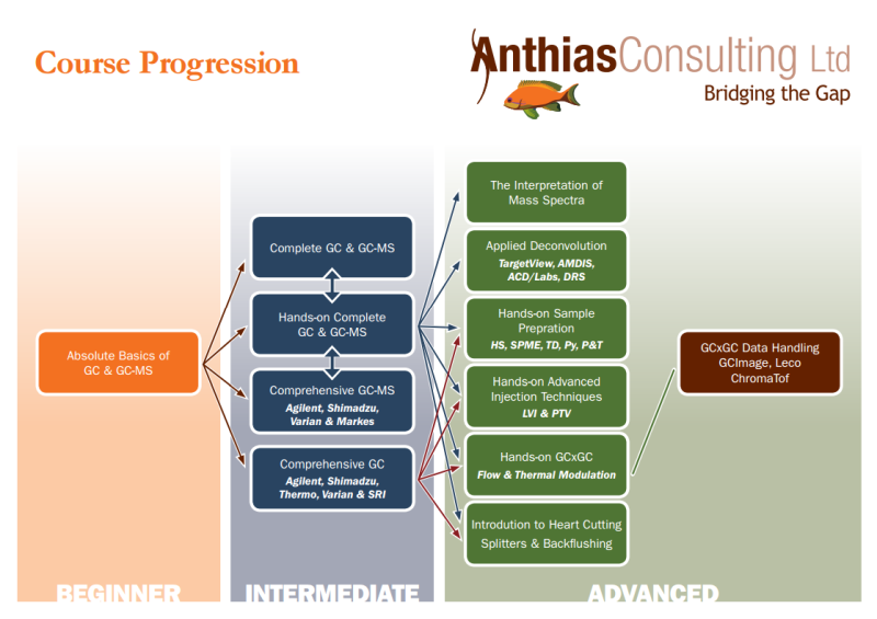 Training for all Levels of Experience | Anthias Consulting